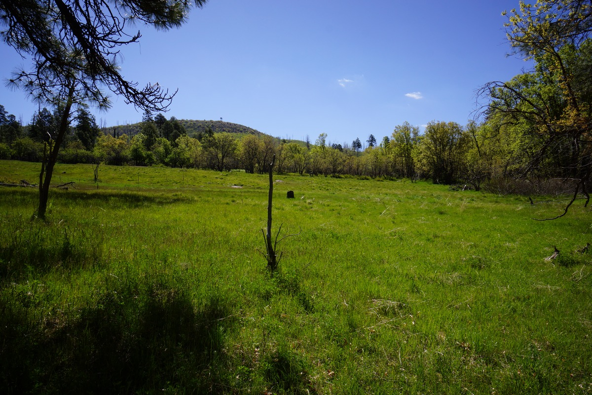 a view of aztec peak from a green meadow