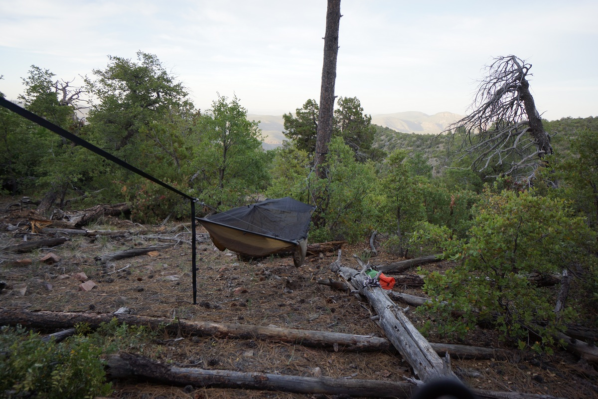 hammock hanging in the sierra ancha wilderness near edward spring