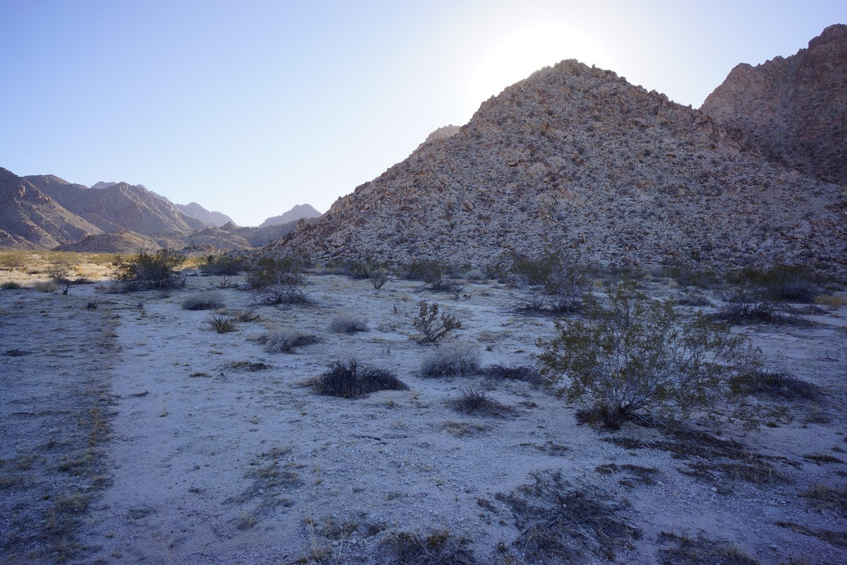 coxcomb mountains approach from a sandy wash