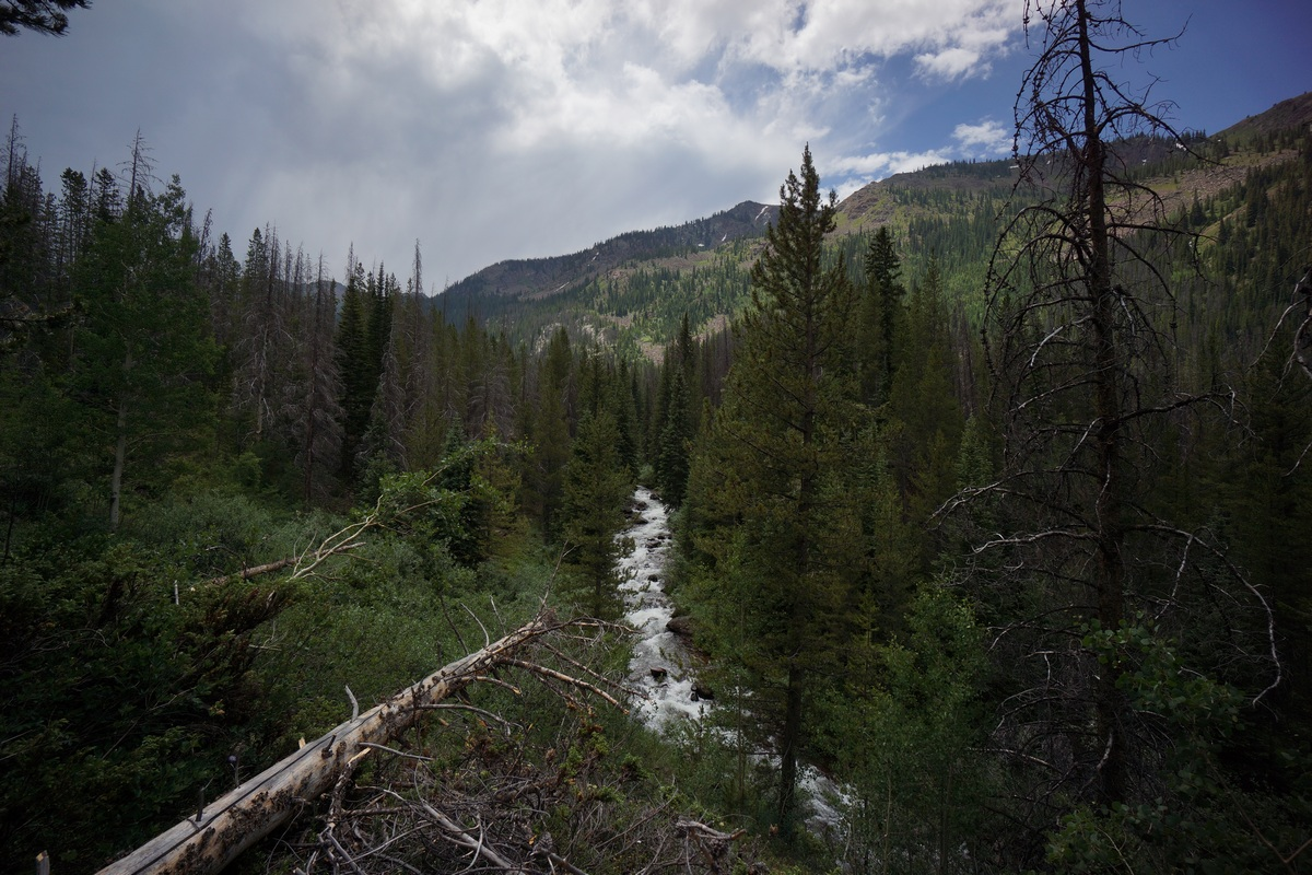 view of gore creek from the gore creek trail in the eagles nest wilderness of colorado