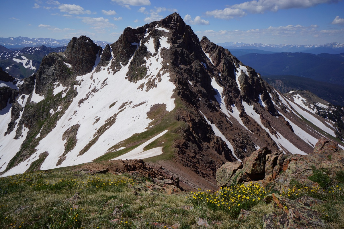 view of snow peak with snow and yellow wildflowers in july - gore mountains