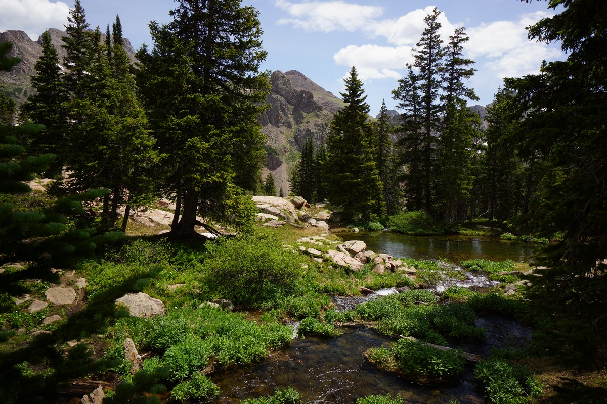 creek flowing into pond from gore lake in eagles nest wilderness