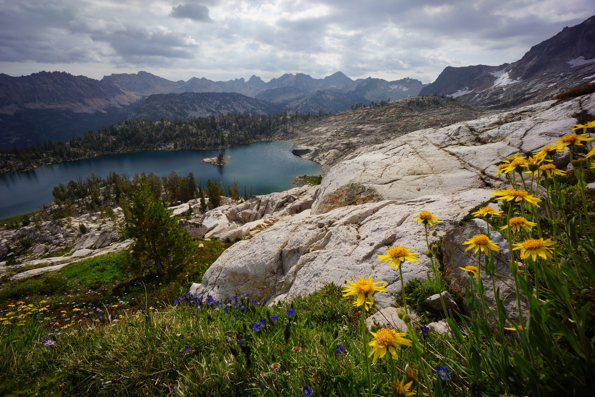 colorful wildflowers above lake katheryn in idaho's sawtooth wilderness