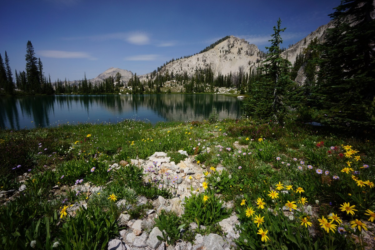 sawtooth wilderness mountain behind alpine lake with colorful wildflowers