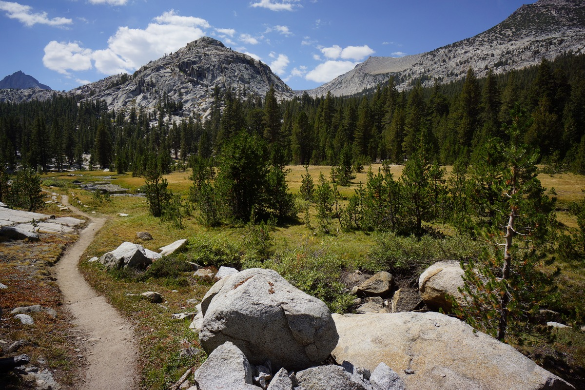 pacific crest trail in john muir wilderness