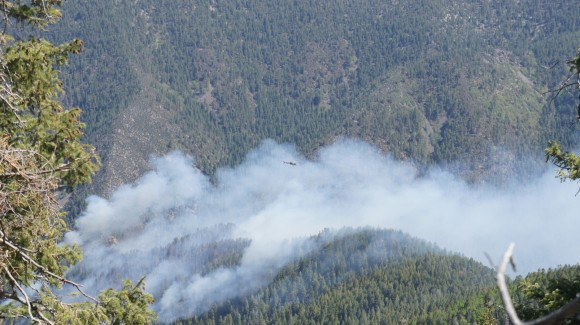 helicopter flying above a forest fire