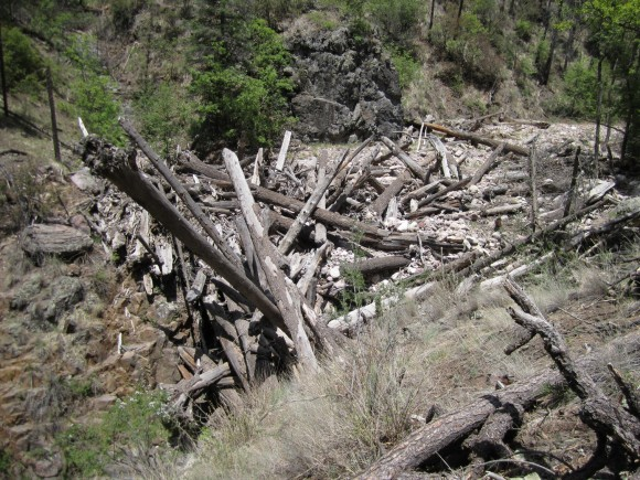 logjam from flash flood debris along camp creek gila wilderness