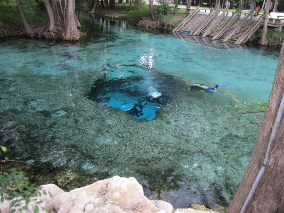 devils eye spring ginnie springs florida