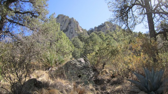 chisos mountains backpacking