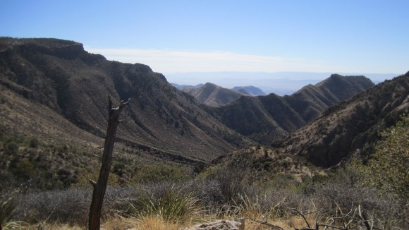 big bend - chisos mountains - blue creek canyon