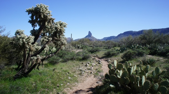 weaver's needle in distance from black mesa trail