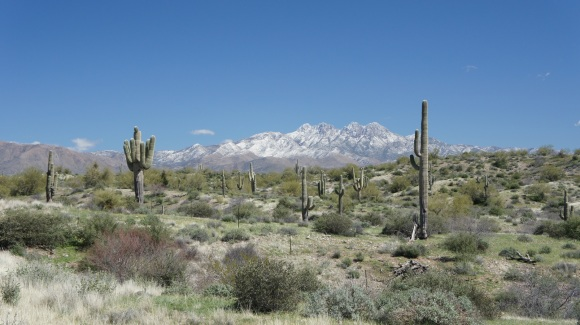 snow capped Four Peaks mountains in march 2013