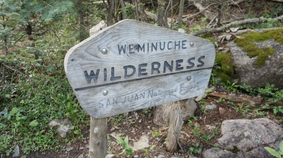 trail sign for the weminuche wilderness boundary near needleton trailhead