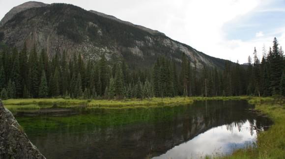 elk park trail beaver pond