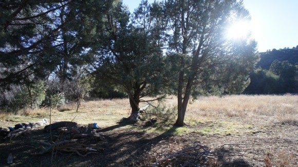 relaxing by my campsite in reavis ranch