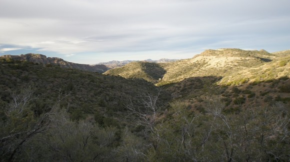 northern end of the reavis ranch trail