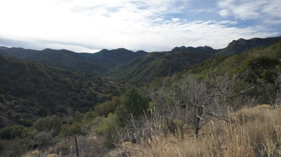 View From The Frog Tanks Trail Near Plow Saddle