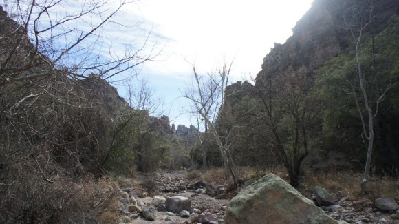 view from the bottom of rogers canyon