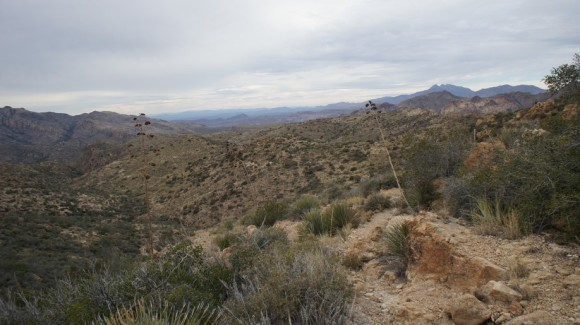 view from the jf trail in the superstition wilderness