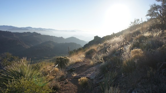 morning on the superstitiotn ridgeline trail