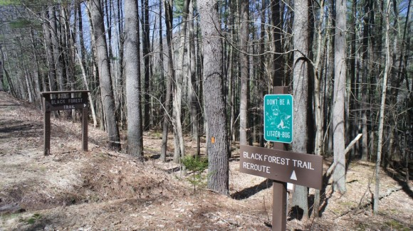 picture of the trailhead for the black forest trail in slate run, pa