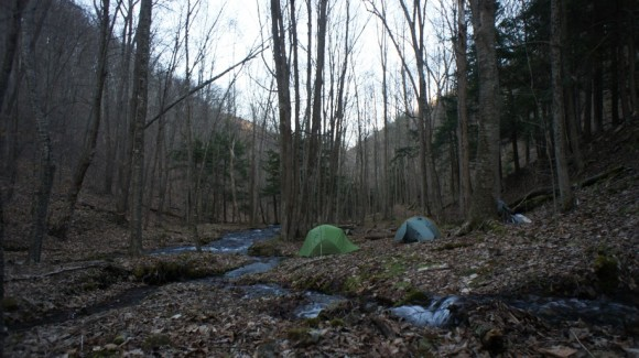 campsite along little slate run - black forest trail, pa