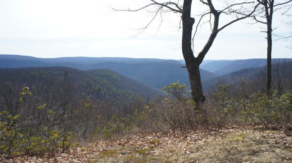 pine creek gorge in april