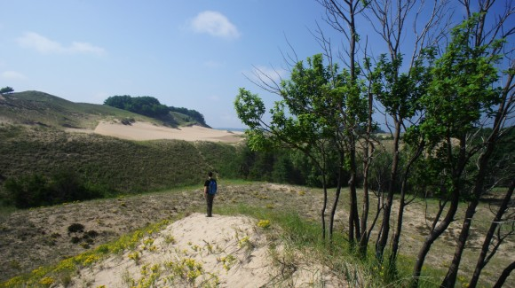 southern border of nordhouse dunes wilderness