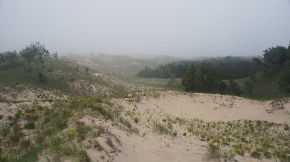 nordhouse dunes wilderness fog
