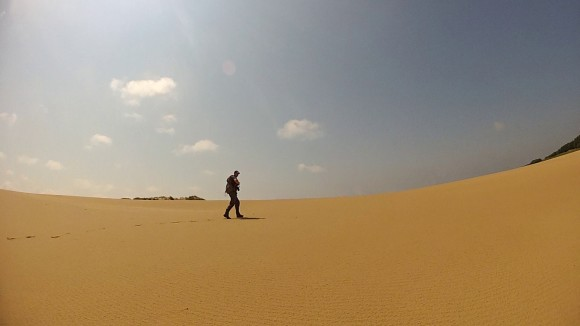 Compacted Dune Field