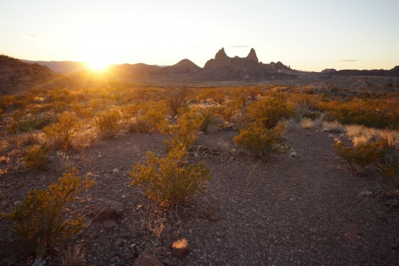 view of the sunrise over mule ears peaks in big bend