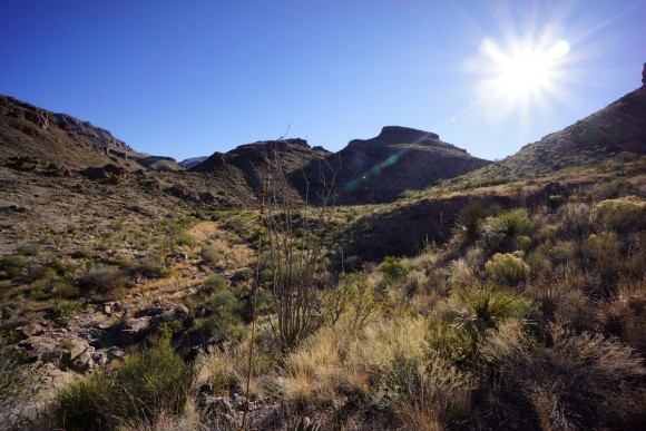 the trail up to jacks pass in big bend np