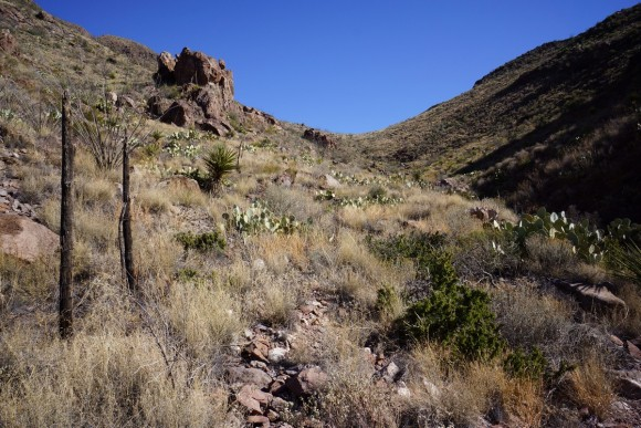 looking up the final section of jacks pass trail