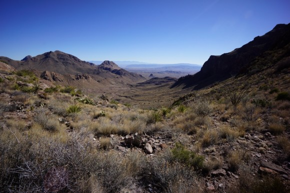 looking east/southeast from jack's pass in big bend national park