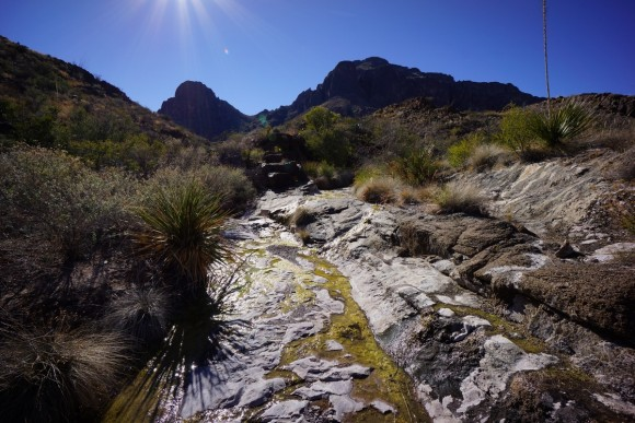 a picture of water flowing over rocks from dominguez spring in big bend national park