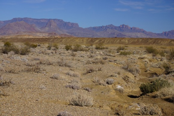 Desert Terrain in Big bend