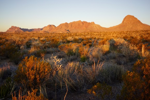 elephant tusk and backbone ridge in big bend national park illuminated by the sunrise