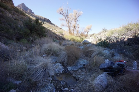in big bend national park, filtering water from elephant tusk spring