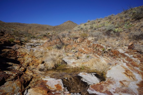 elephant tusk trail water flowing through red rock wash