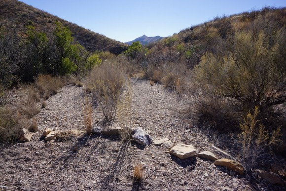 a view of the junction of the dodson trail and adler spring trail in big bend national park