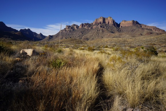 hiking the juniper canyon trail towards crown mountain in big bend national park, tx