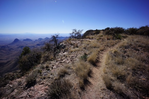 the south rim trail skirts the edge of the south rim in big bend national park