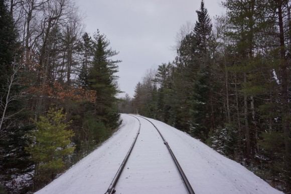 railroad tracks in forest in michigan during winter